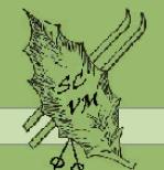 L'attribut alt de cette image est vide, son nom de fichier est LOGO-2.png.